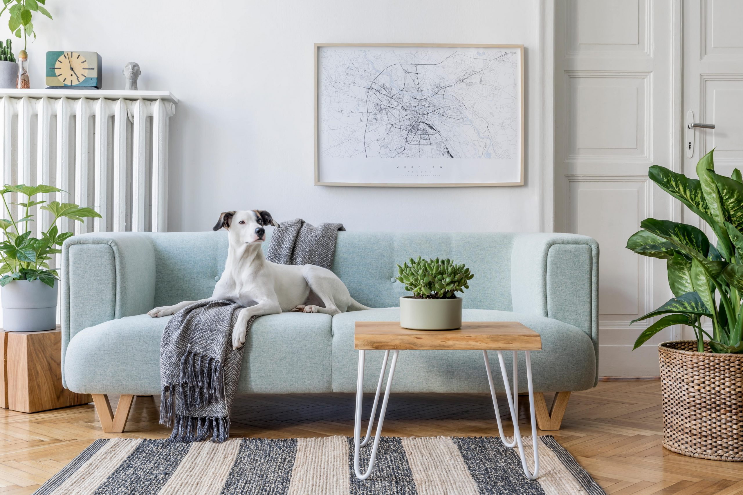 Sofa do salonu – 6 najmodniejszych modeli!