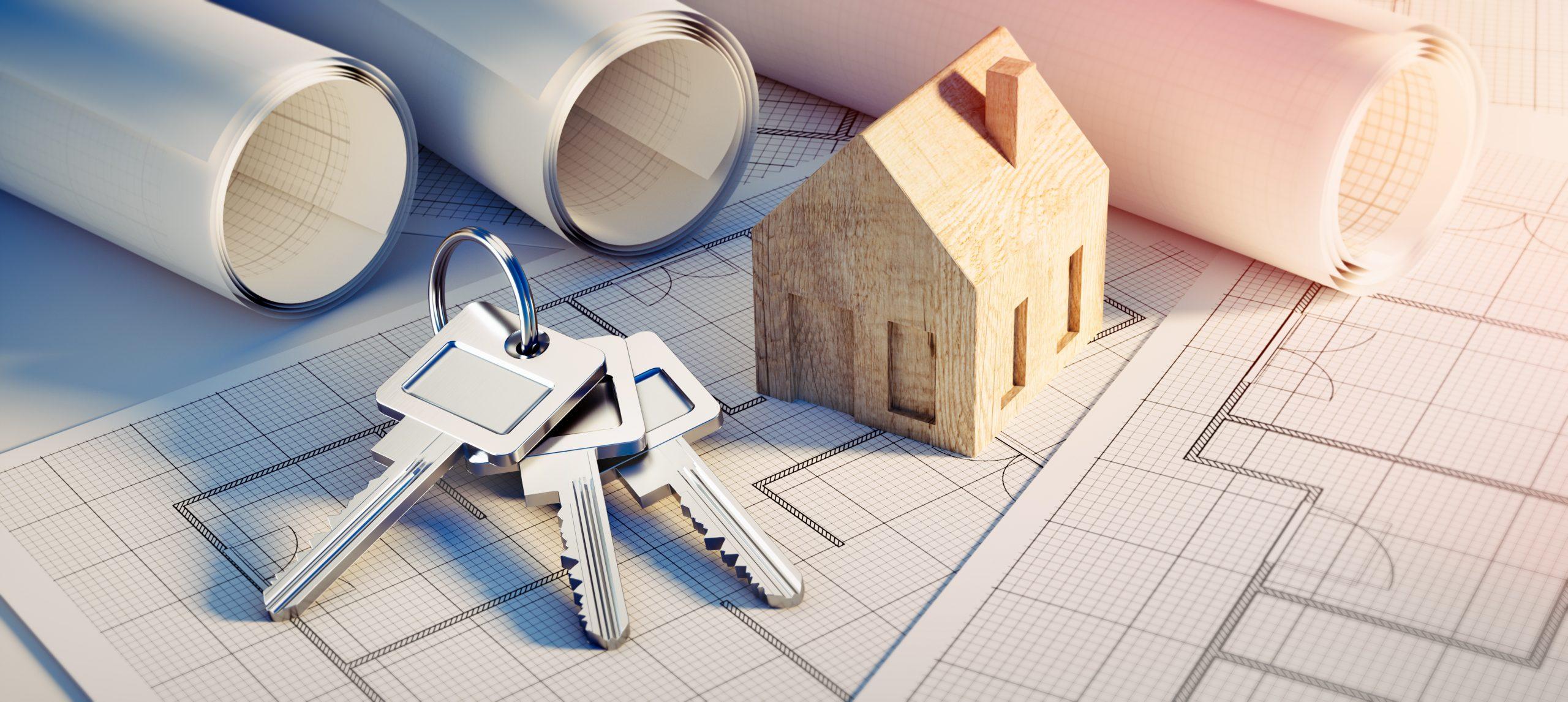 Budowa domów drewnianych w technologii szkieletowej