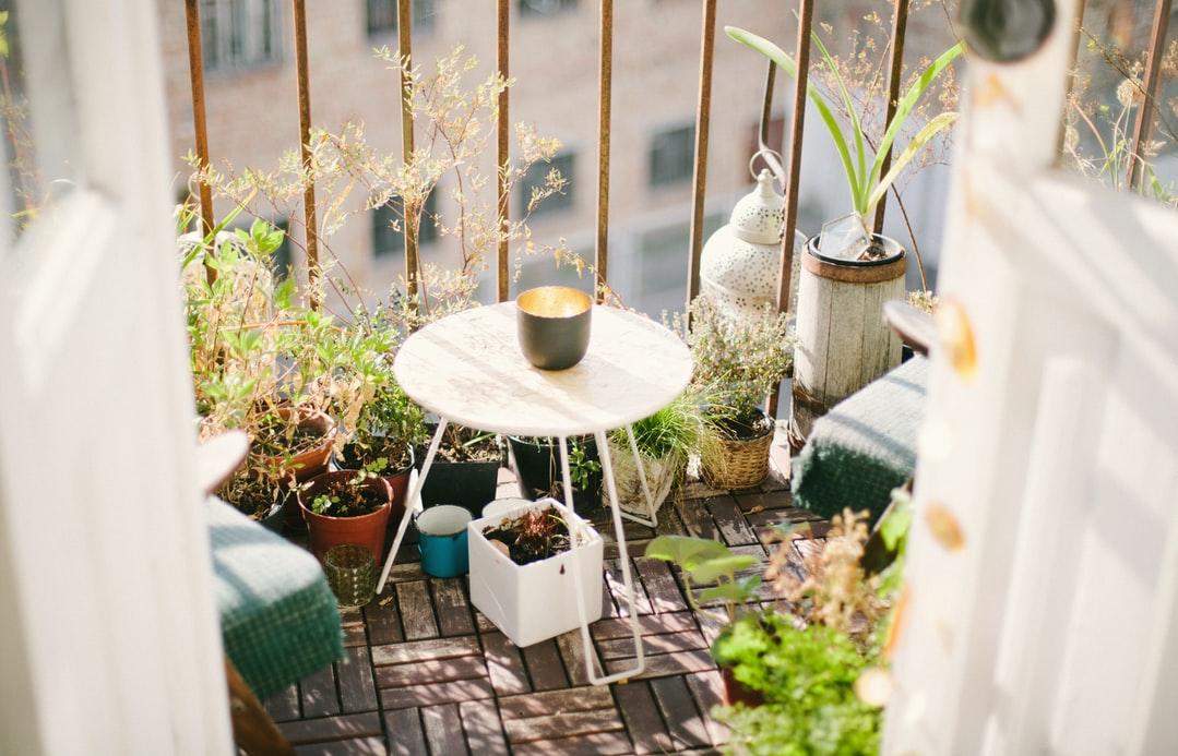 Jakie rośliny balkon? Krótki przewodnik