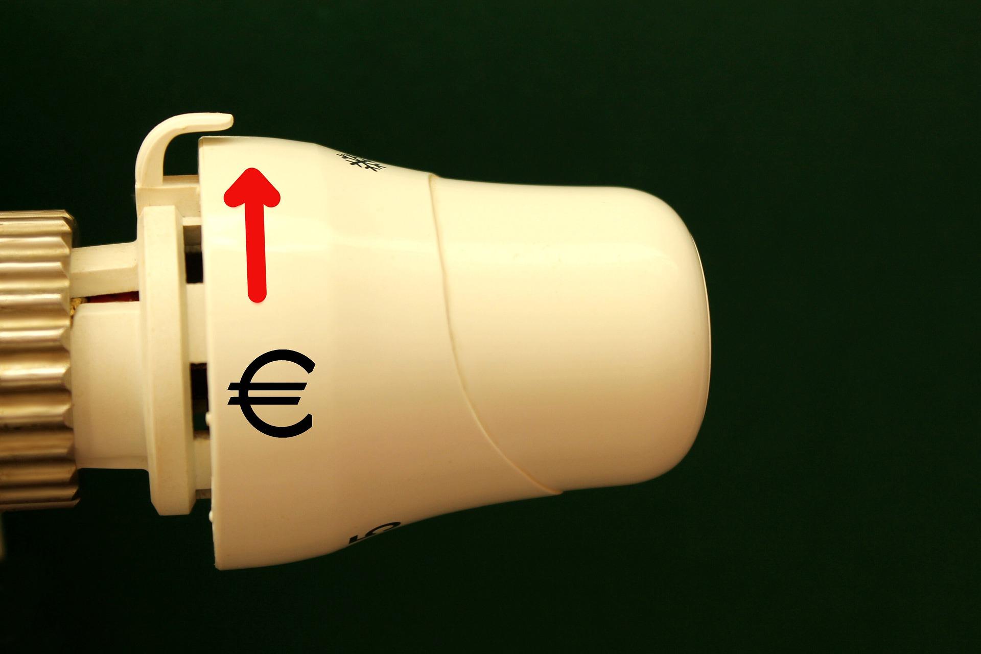 Sterowniki marki Viessmann - sprawdzona marka i niezawodna integracja urządzeń