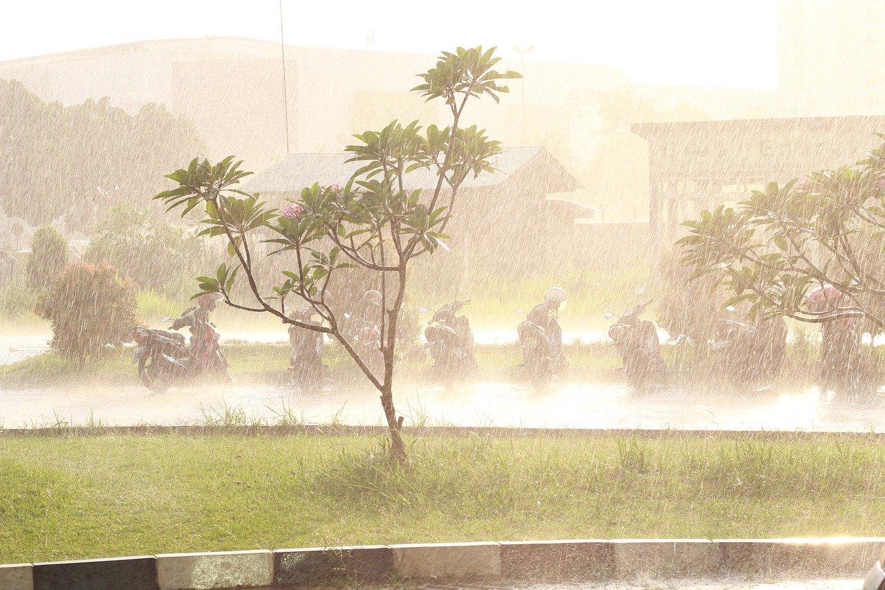 Zbiorniki na deszczówkę - czy warto w nie zainwestować?