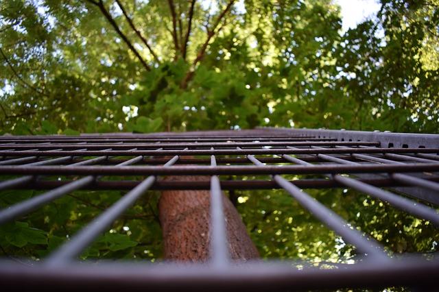 Ogrodzenie działki budowlanej - co wybrać? Koszty i wymagania budowlane